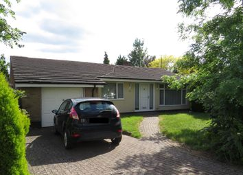 Thumbnail 3 bed detached bungalow to rent in The Ridings, Desborough, Kettering