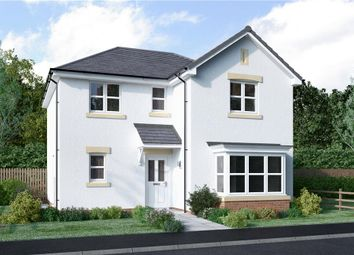 """Thumbnail 4 bedroom detached house for sale in """"Lamont Detached"""" at Ayr Road, Newton Mearns, Glasgow"""