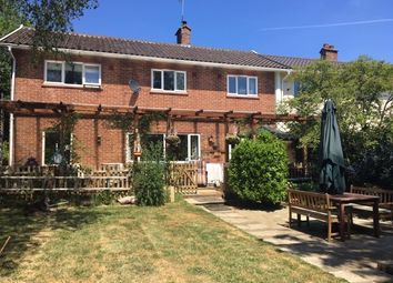 Thumbnail 4 bed end terrace house for sale in Waveney Cottages, Aldeby, Beccles, Norfolk