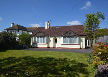 Thumbnail 4 bed detached bungalow for sale in Exeter Road, Honiton, Devon