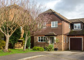 Thumbnail 4 bed semi-detached house for sale in Oak Hill, Alresford
