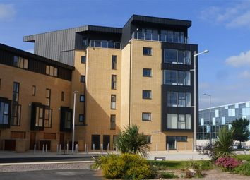 Thumbnail 2 bed flat to rent in Empire Way, Cardiff
