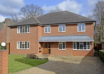 Thumbnail 5 bed detached house to rent in Eastwick Road, Hersham