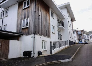 Thumbnail 2 bed flat for sale in St. Bartholomews Road, Newton Abbot