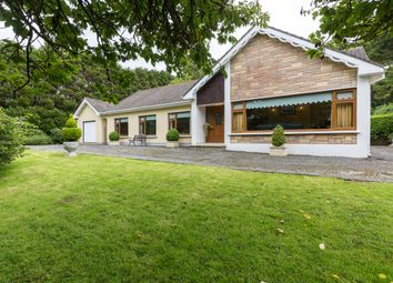 Thumbnail 4 bed detached house for sale in Kilderry, Ballymitty, Wexford County, Leinster, Ireland