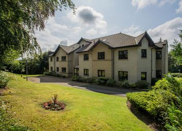 Thumbnail 3 bed flat for sale in Flat 3 Springfields 14, South Avenue, Paisley
