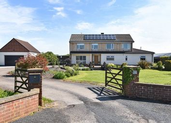Thumbnail 5 bed detached house for sale in York Road, Riccall, Nr York
