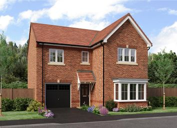 "Thumbnail 4 bedroom detached house for sale in ""The Seeger"" at Weldon Road, Cramlington"