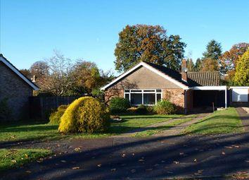 3 bed detached bungalow for sale in Hilland Rise, Headley, Bordon GU35