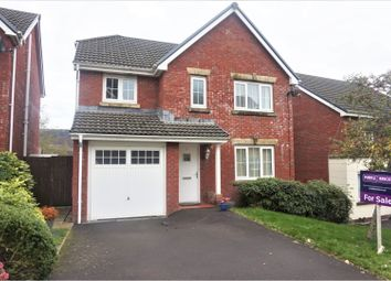 Thumbnail 4 bed detached house for sale in Parc Gellifaelog, Tonypandy