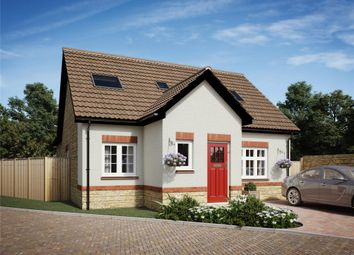 Thumbnail 4 bed detached bungalow for sale in The Frome, The Chestnuts, Winscombe, Somerset