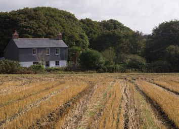 Thumbnail 3 bedroom detached house for sale in Lower Grumbla, Sancreed, Penzance