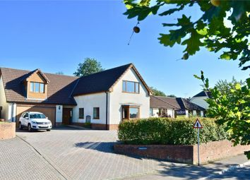 Thumbnail 4 bed detached house for sale in Payhembury, Honiton, Devon