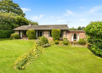 Thumbnail 4 bed detached bungalow for sale in Oakhayes Road, Woodbury, Exeter