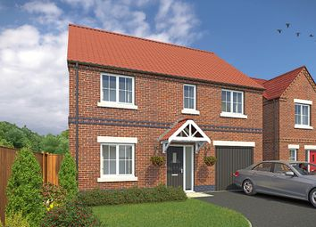 """Thumbnail 4 bed detached house for sale in """"The Rosebury"""" at Wellow Road, Ollerton, Newark"""