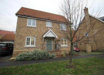 Thumbnail 3 bed detached house to rent in Spindle Street, Colchester, Essex