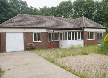 Thumbnail 3 bed bungalow to rent in Church Road, Burgh Castle, Great Yarmouth
