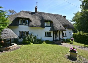 Thumbnail 4 bed detached house for sale in Amport, Andover, Hampshire