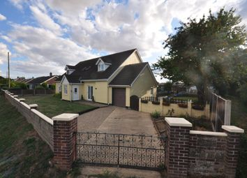 Thumbnail 5 bed detached house for sale in Hall Lane, Wacton, Norwich