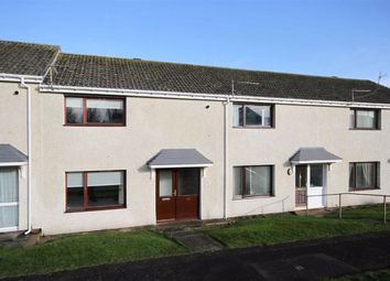 Thumbnail 2 bed semi-detached house to rent in Newfields, Berwick-Upon-Tweed