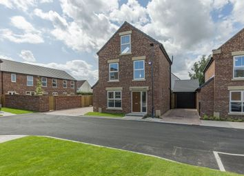 Thumbnail 4 bed detached house for sale in Holly Grove, Thorpe Willoughby, Selby