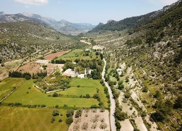 Thumbnail Land for sale in Spain, Mallorca, Alaró