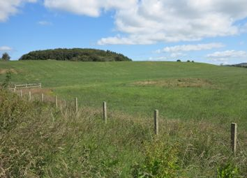 Land for sale in Kirkcudbright, Dumfries & Galloway DG6
