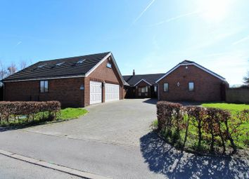 Thumbnail 5 bedroom detached bungalow to rent in Gorse Lane, Tarleton, Preston