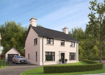 Thumbnail 4 bedroom detached house for sale in 2, Belvoir Park, Belfast