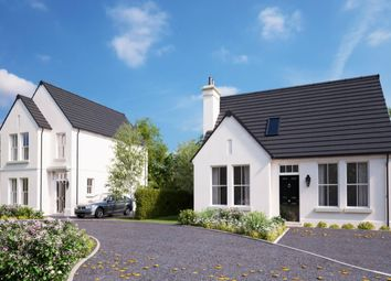 Thumbnail 3 bed detached house for sale in Belfast Road, Ballygowan, Newtownards