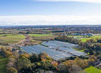 Thumbnail Industrial for sale in Titchfield Road, Stubbington, Fareham