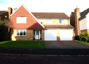 Thumbnail 4 bed detached house to rent in Kelfield Grove, Cramlington