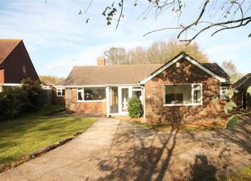Thumbnail 4 bed detached bungalow for sale in Westfield Lane, St Leonards-On-Sea, East Sussex