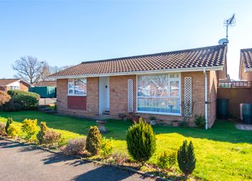 Thumbnail 2 bedroom bungalow to rent in Charlotte Grove, Smallfield, Horley, Surrey