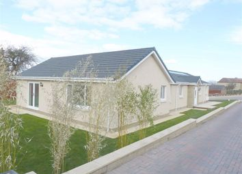 Thumbnail 4 bed detached bungalow for sale in Grahamsdyke Road, Bo'ness