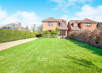 Thumbnail 4 bed equestrian property for sale in Four Marks, Alton, Hampshire