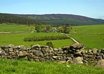 Thumbnail Land for sale in Pitfichie Fields - Whitehills, Monymusk, Inverurie, Aberdeenshire