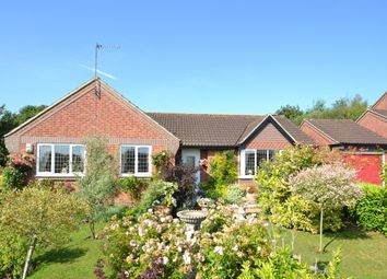 Thumbnail 3 bed detached bungalow for sale in Henstridge, Somerset