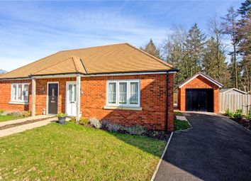 Thumbnail 2 bed bungalow for sale in Holland Drive, Medstead, Alton, Hampshire
