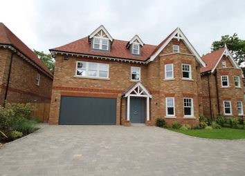 Thumbnail 6 bed detached house to rent in Sundridge Avenue, Bromley