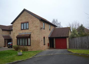 Thumbnail Detached house to rent in Killams Crescent, Taunton, Somerset