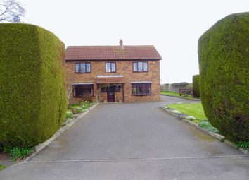 Thumbnail 4 bed property for sale in Backgate, Cowbit, Spalding