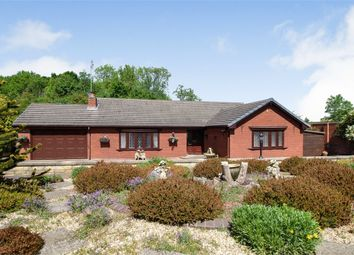 Thumbnail 3 bed detached bungalow for sale in Doncaster Road, Costhorpe, Worksop, Nottinghamshire