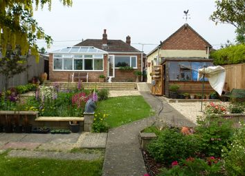 Thumbnail 3 bedroom detached bungalow for sale in Poplar Grove, Kennington, Oxford