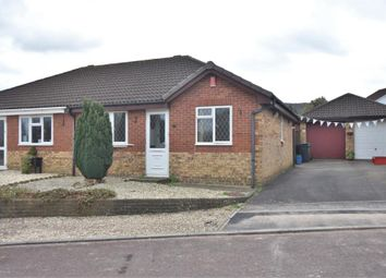Thumbnail Semi-detached bungalow to rent in Rowan Close, Honiton, Devon