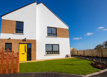 Thumbnail 4 bedroom property for sale in 30B, Butlers Wharf, Derry