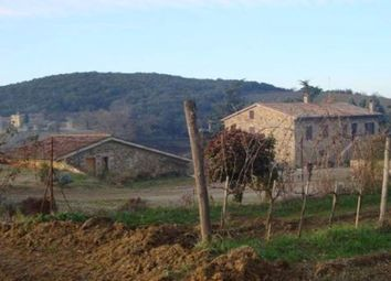 Thumbnail Farm for sale in Azienda Agricola Il Brunello, Montalcino, Siena, Tuscany, Italy