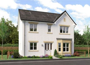 "Thumbnail 4 bed detached house for sale in ""Douglas"" at Dalkeith"
