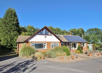 4 bed detached house for sale in Middle Bourne Lane, Lower Bourne, Farnham GU10