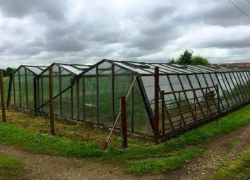 Thumbnail Commercial property for sale in Cambridge Road, Langford, Biggleswade